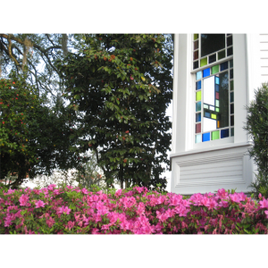 Azaleas & Stained Glass